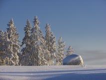 Finnische Winterszene 2 Lizenzfreie Stockbilder