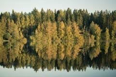 Finnischer blauer See und Wald Lizenzfreies Stockfoto