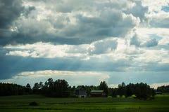 Finnischer Landwirtschaftsbauernhof nahe einem grünen Weizen und Haferfeldern Stockbild