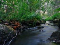 Finnischer Waldfluß lizenzfreie stockfotos