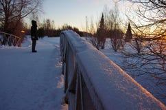 Finnisches Lappland Stockbild