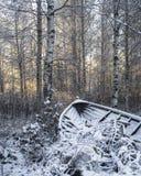 In finnisches Lappland herum gehen lizenzfreies stockfoto