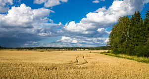 Finnish Countryside Royalty Free Stock Image