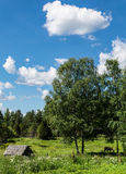 Finnish countryside Stock Photos
