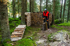 Finnish elder man chopping woods in the forest Royalty Free Stock Image