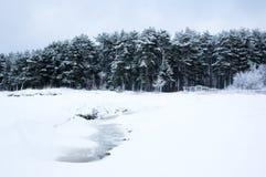 Finnish Gulf in winter Stock Photos