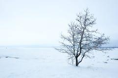 Finnish Gulf in winter Stock Image