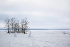 Finnish Gulf in winter Royalty Free Stock Image
