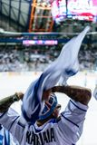 Finnish hockey fan. Finnish ice hockey fans celebrating goal during the match royalty free stock photos