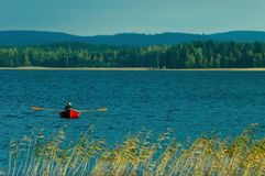 Finnish lake. With forest and a rowing boat Stock Image
