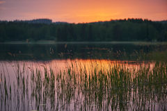 Finnish lake at sunset with background intentionally blurred Royalty Free Stock Photo