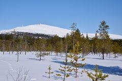 Finnish Lapland royalty free stock photography