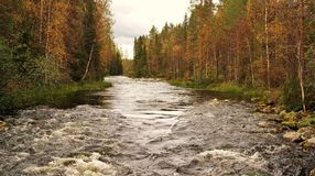 Finnish nature. A part of Oulanka national park, Finland Stock Photos