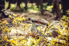 Finnish rifle M-27. Mosin nagant Finnish rifle M-27 in bushes Royalty Free Stock Photography