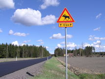 Finnish road. With the famous reindeers warning traffic sign royalty free stock photography