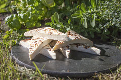 Finnish squeaky cheese. A pile of Finnish squeaky cheese, on a stone plate, in the garden Stock Photos