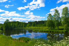 Finnish Summer ,Pihtipudas. This picture was taken in Finland Pihtipudas  2016 summer Royalty Free Stock Photo