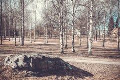 finnland Weinlesefrühlingslandschaft mit Birke und Stein Lizenzfreies Stockbild