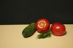 Finocchio del pomodoro del cetriolo Fotografie Stock