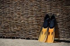 Fins on beach Stock Photos