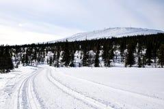 Fins Lapland royalty-vrije stock afbeelding