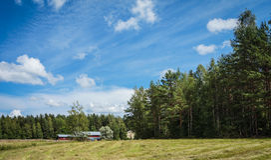 Fins platteland Royalty-vrije Stock Afbeeldingen