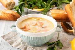 Finse romige soep met zalm, aardappels, uien, en wortelen royalty-vrije stock afbeeldingen
