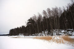 Finsky gulf of the Baltic sea in winter Royalty Free Stock Photos