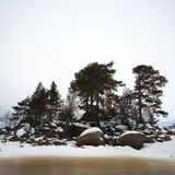 Finsky gulf of the Baltic sea in winter Royalty Free Stock Image