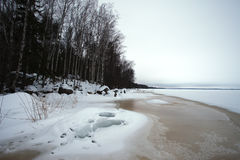 Finsky gulf of the Baltic sea in winter Stock Photography