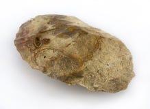Fint Axehead. Macro image of a flint artifact Royalty Free Stock Photography