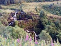 Fintry, Шотландия стоковые изображения rf