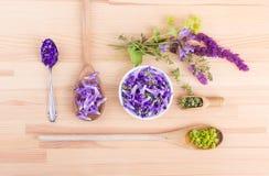 fiołek, jadalni kwiaty zdjęcia royalty free