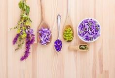 fiołek, jadalni kwiaty obrazy royalty free