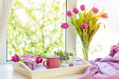 Fiołkowego światła słonecznego wygodny domowy pojęcie fotografia stock