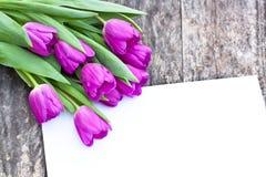 Fiołkowi tulipany na dębowym brązu stole z białym prześcieradłem papier Obrazy Stock