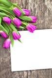 Fiołkowi tulipany na dębowym brązu stole z białym prześcieradłem papier Zdjęcie Stock