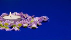 Fiołkowy asteru kwiat, świeczka i zdjęcie royalty free
