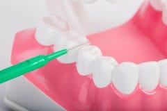 Fio dental fotografia de stock royalty free
