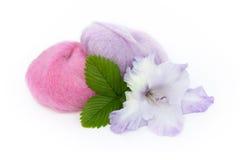 Fio e tipo de flor Fotos de Stock Royalty Free