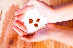 Fiocchi della noce di cocco Fotografia Stock