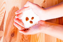 Fiocchi della noce di cocco Fotografia Stock Libera da Diritti