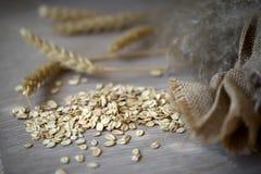 Fiocchi di avena del primo piano, punte del cereale e sacco crudi contro un tovagliolo di tela grezzo normale Concetto di aliment Fotografia Stock Libera da Diritti