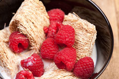 Fiocchi di frumento con le bacche Fotografia Stock Libera da Diritti