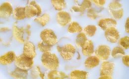 Fiocchi di granturco, cereale con latte buon per fondo e struttura Fotografia Stock Libera da Diritti