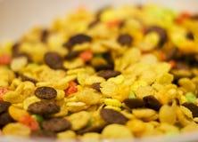 Fiocchi di mais e fiocchi del cioccolato per il fuoco selettivo della prima colazione Immagine Stock