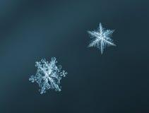 Fiocchi di neve blu-chiaro Immagini Stock