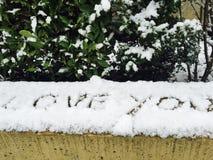 Fiocchi di neve di amore di inverno immagini stock