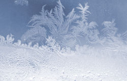 Fiocchi di neve gelidi Fotografia Stock Libera da Diritti