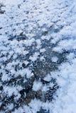 Fiocchi di neve ghiacciati Immagini Stock